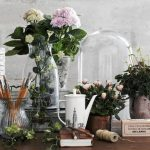 Цветочный рай у вас дома