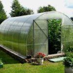 Секреты высаживания растений в теплице